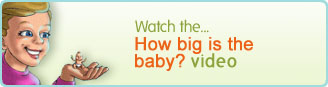 How Big is the Baby?