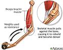 Bone-building exercise